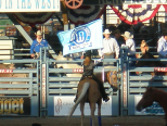 Reno Rodeo. Wildest Riches Rodeo in the West